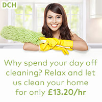 domestic home cleaners